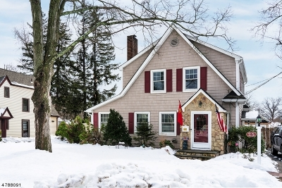 Morris County Single Family Home For Sale: 25 Prospect Ave