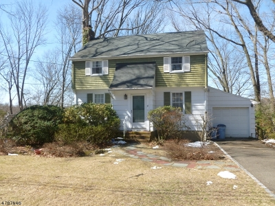 Passaic County Single Family Home For Sale: 31 Spruce Ter