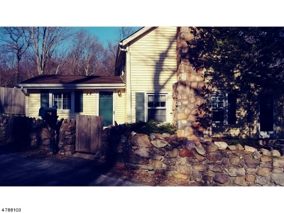 Morris County Single Family Home For Sale: 32 Teabo Rd