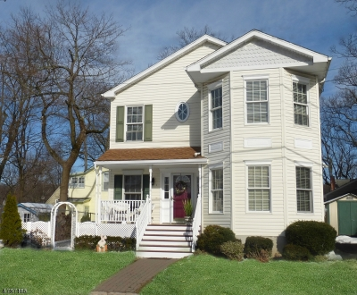 Morris County Single Family Home For Sale: 41 St. Johns Avenue