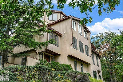 Morris County Single Family Home For Sale: 5 Apache Way