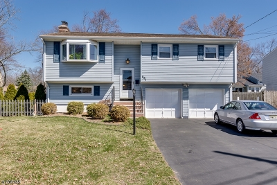 Piscataway Twp. Single Family Home For Sale: 801 Mohill Pl
