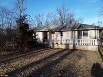 Bedminster Twp. Single Family Home For Sale: 330 Airport Rd