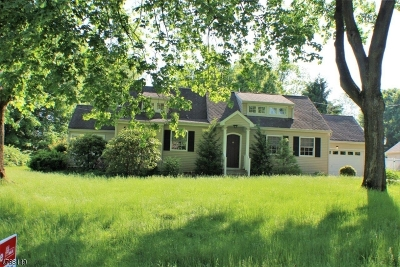 Roxbury Twp. Single Family Home For Sale: 19 Hilltop Rd