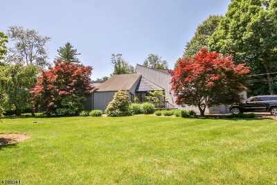 Franklin Lakes Boro Single Family Home For Sale: 674 Orchard Ln