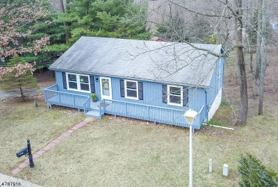 Bethlehem Twp., High Bridge Boro Single Family Home For Sale: 3 Squire Ln