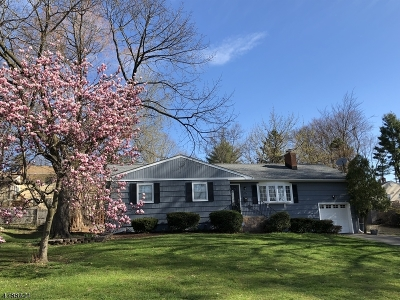 Parsippany Single Family Home For Sale: 7 Main Dr