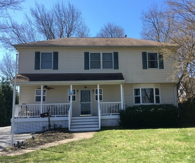 Parsippany Single Family Home For Sale: 24 Springview Dr