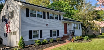 Bridgewater Twp. Single Family Home For Sale: 555 Alletra Ave