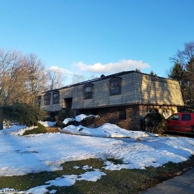 Roxbury Twp. Single Family Home For Sale: 195 S Hillside Ave
