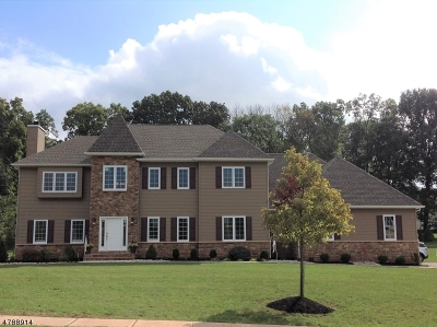 Branchburg Twp. Single Family Home For Sale: 9 Fawn Run, Ln