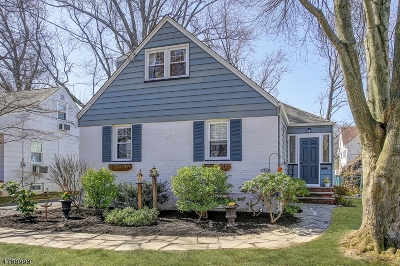 WestField Single Family Home For Sale: 1314 Pine Grove Ave