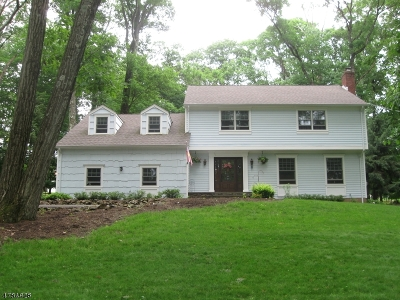Bridgewater Twp. Single Family Home For Sale: 12 Redwood Rd