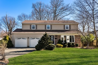 WestField Single Family Home For Sale: 15 Burgess Ct