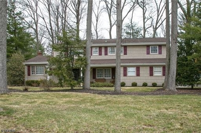Edison Twp. Single Family Home For Sale: 77 Livingston Ave
