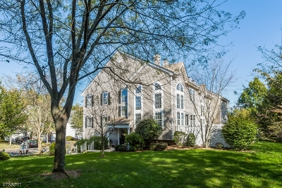 Bernards Twp. Condo/Townhouse For Sale: 95 Constitution Way
