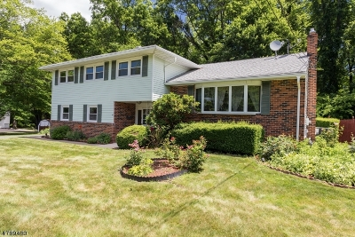 Parsippany-Troy Hills Twp. Single Family Home For Sale: 14 Paris Pl
