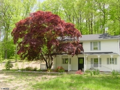 Randolph Twp. Single Family Home For Sale: 1395 Sussex Tpke