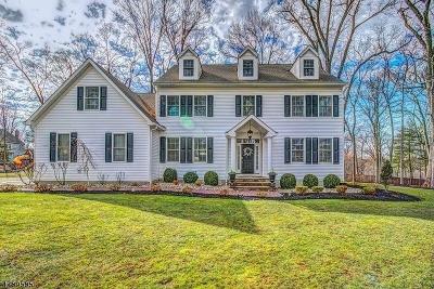 Branchburg Twp. Single Family Home For Sale: 5 Edgewood Rd