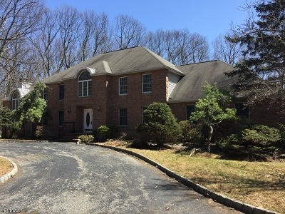 Mount Olive Twp. Single Family Home For Sale: 22 Brendan Dr