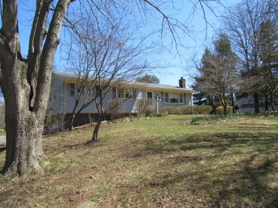 Bethlehem Twp. Single Family Home For Sale: 319 County Hwy579
