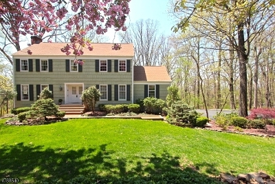 Bridgewater Twp. Single Family Home For Sale: 1055 Tall Oaks Dr