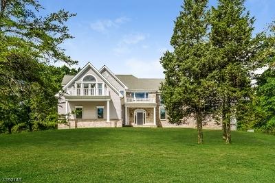 Kingwood Twp. Single Family Home For Sale: 263 Kingwd Sta-Barbertown