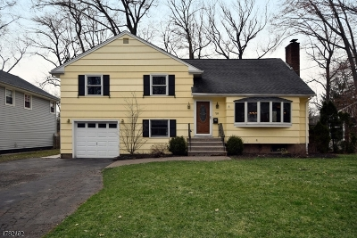 Cranford Twp. Single Family Home For Sale: 733 Willow St