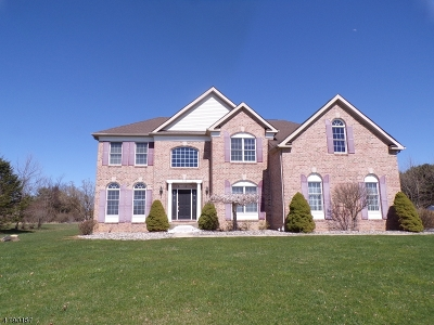 Bethlehem Twp. Single Family Home For Sale: 325 Bloomsbury Pittstown Rd.