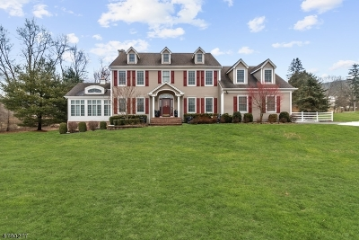 Long Valley Single Family Home For Sale: 134 Old Turnpike Road