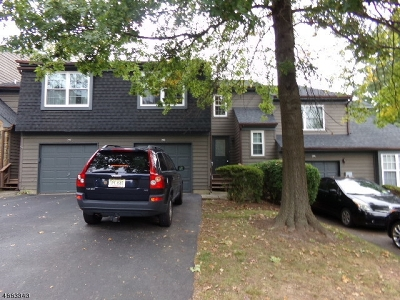 Montgomery Twp. NJ Condo/Townhouse For Sale: $315,000