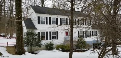 Roxbury Twp. Single Family Home For Sale: 40 Mooney Rd
