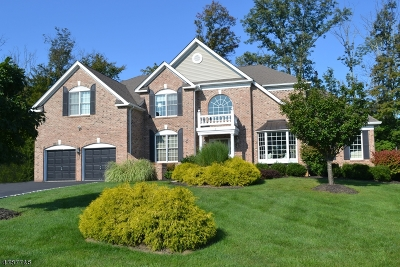 Mount Olive Twp. Single Family Home For Sale: 2 Fields Way