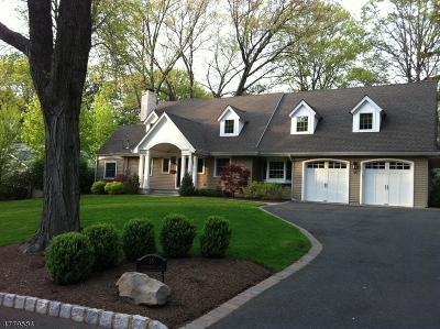 Mountainside Boro Single Family Home For Sale: 15 Tanglewood Ln