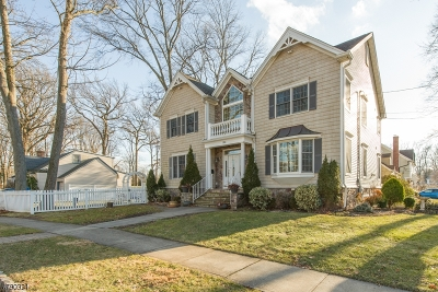 Westfield Town Single Family Home For Sale: 1700 Boulevard