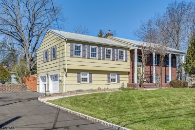Westfield Town Single Family Home For Sale: 43 Unami Terrace