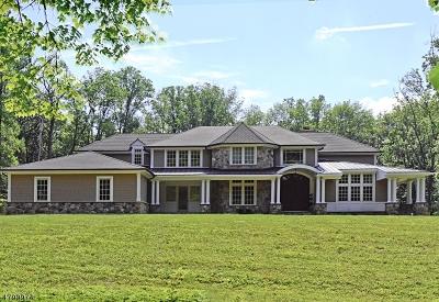 Mendham Boro, Mendham Twp. Single Family Home For Sale: 41 Oak Knoll Rd