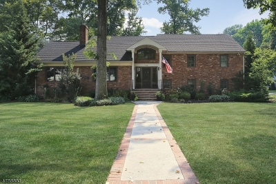 Westfield Town Single Family Home For Sale: 752 Norman Place