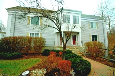 Chatham Twp Condo/Townhouse For Sale: 137 Riveredge Dr #137