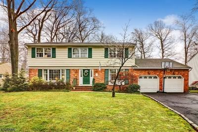 Cranford Twp. Single Family Home For Sale: 108 Glenwood Rd