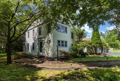 Berkeley Heights Single Family Home For Sale: 77 Springfield Avenue