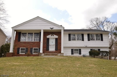 Randolph Twp. Single Family Home For Sale: 126 W Hanover Ave