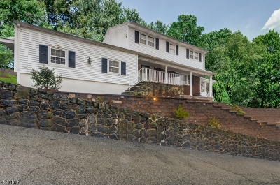 Mountainside Boro Single Family Home For Sale: 1041 Summit Ln
