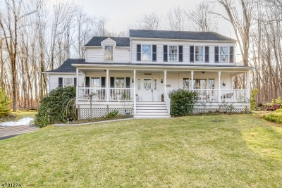 Mount Olive Twp. Single Family Home For Sale: 81 Waterloo Rd