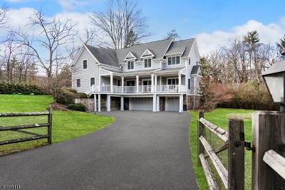 Bernardsville Boro Single Family Home For Sale: 32 Lloyd Rd