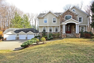 Franklin Lakes Boro Single Family Home For Sale: 719 Chestnut Pl