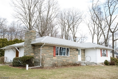 Mount Olive Twp. Single Family Home For Sale: 41 Smithtown Rd