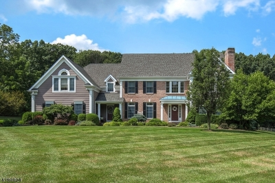 Tewksbury Twp. Single Family Home For Sale: 17 Tiger Dr