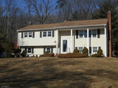 Bound Brook Boro Single Family Home For Sale: 642 N Meadow Dr