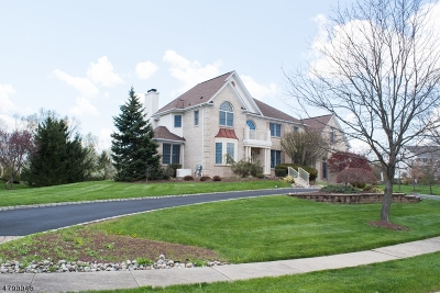 Montgomery Twp. Single Family Home For Sale: 36 Titus Rd